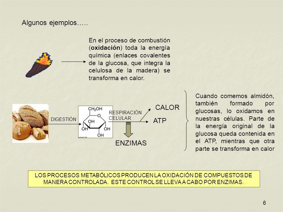 6 En el proceso de combustión (oxidación) toda la energía química (enlaces covalentes de la glucosa, que integra la celulosa de la madera) se transforma en calor.