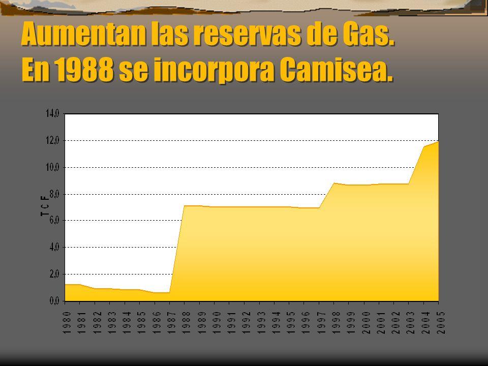 Aumentan las reservas de Gas. En 1988 se incorpora Camisea.