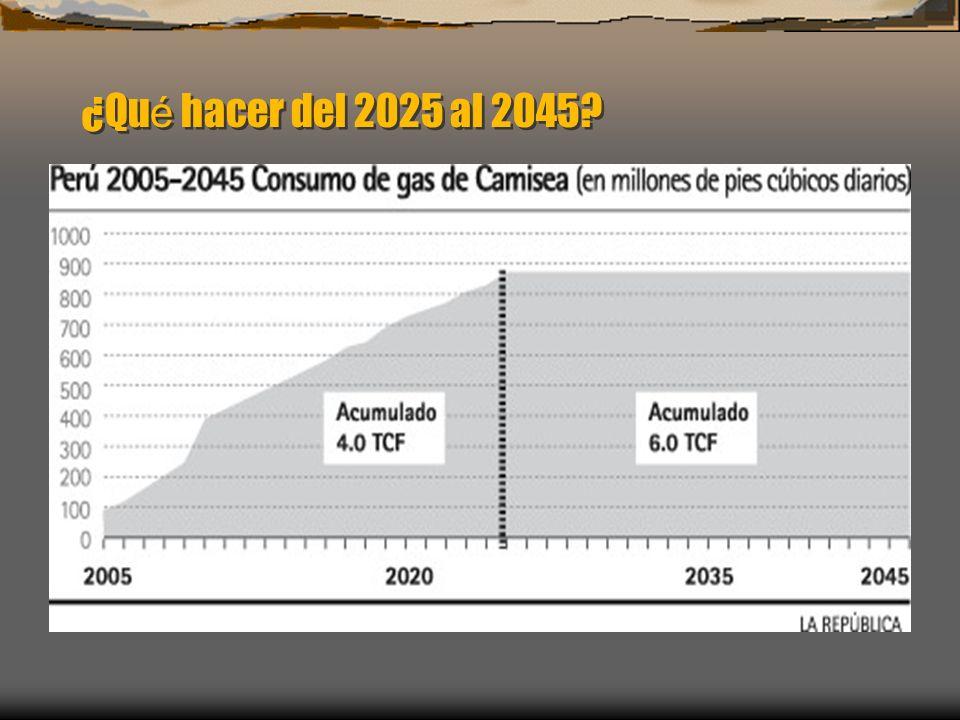 ¿Qu é hacer del 2025 al 2045?