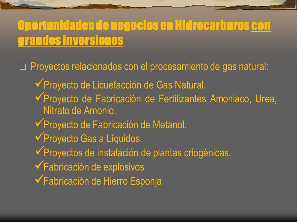 Oportunidades de negocios en Hidrocarburos con grandes inversiones Proyectos relacionados con el procesamiento de gas natural: Proyecto de Licuefacció