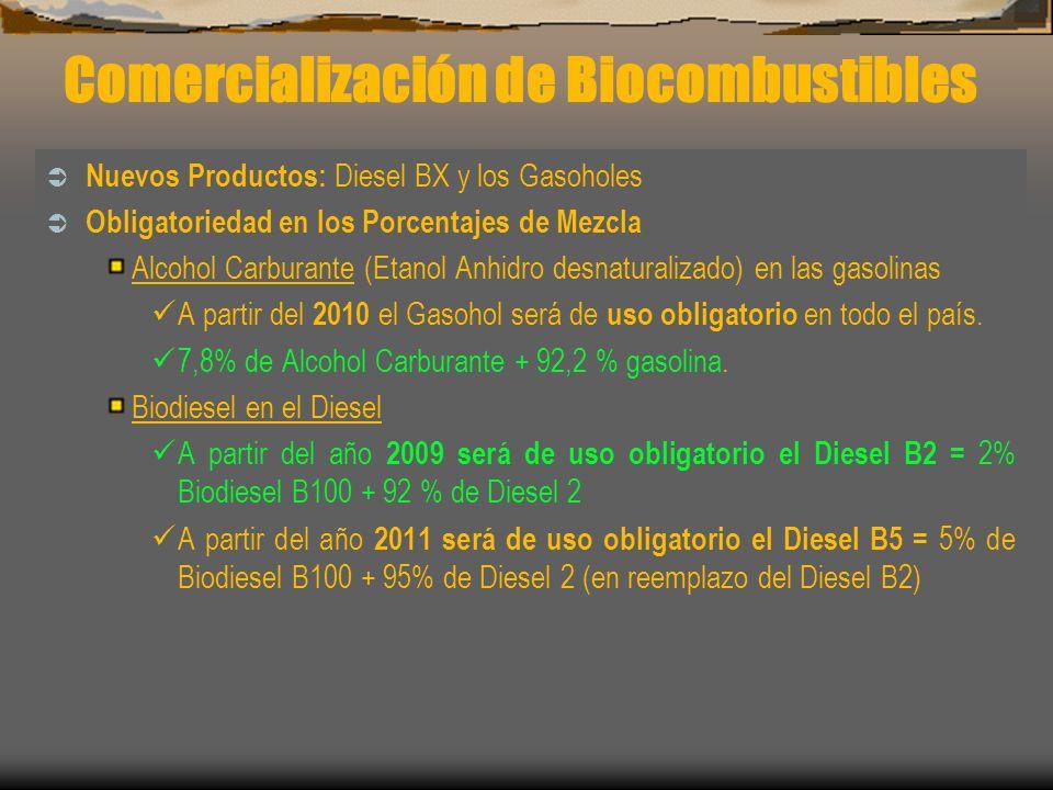 Comercialización de Biocombustibles Nuevos Productos: Diesel BX y los Gasoholes Obligatoriedad en los Porcentajes de Mezcla Alcohol Carburante (Etanol