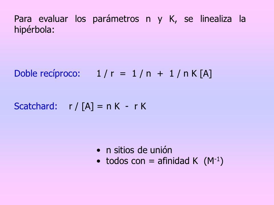 Para evaluar los parámetros n y K, se linealiza la hipérbola: Doble recíproco:1 / r = 1 / n + 1 / n K [A] Scatchard:r / [A] = n K - r K n sitios de un
