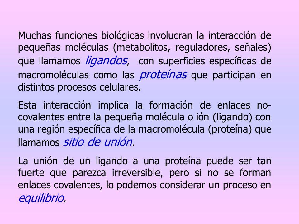 Muchas funciones biológicas involucran la interacción de pequeñas moléculas (metabolitos, reguladores, señales) que llamamos ligandos, con superficies