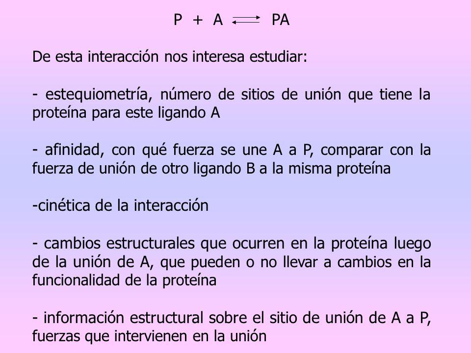 P + A PA De esta interacción nos interesa estudiar: - estequiometría, número de sitios de unión que tiene la proteína para este ligando A - afinidad,