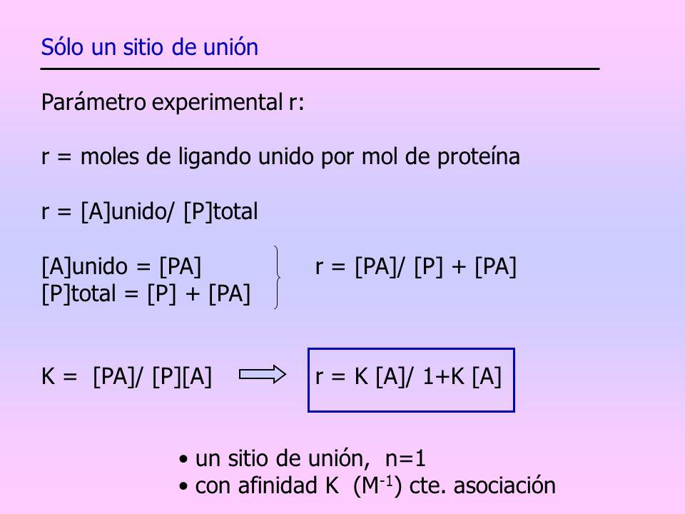 Sólo un sitio de unión Parámetro experimental r: r = moles de ligando unido por mol de proteína r = [A]unido/ [P]total [A]unido = [PA] r = [PA]/ [P] +