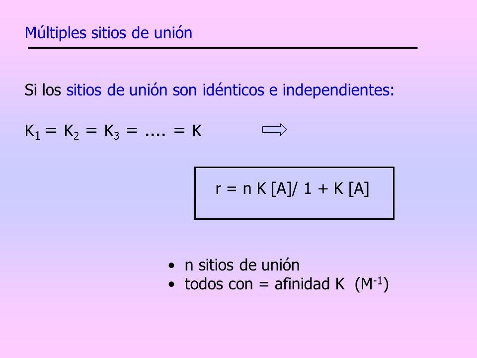 Múltiples sitios de unión Si los sitios de unión son idénticos e independientes: K 1 = K 2 = K 3 =.... = K r = n K [A]/ 1 + K [A] n sitios de unión to