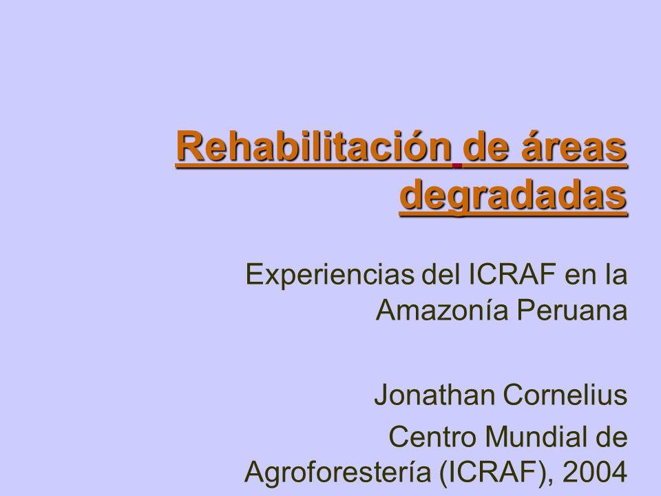RehabilitaciónRehabilitación de áreas degradadas degradadas Rehabilitación degradadas Experiencias del ICRAF en la Amazonía Peruana Jonathan Cornelius
