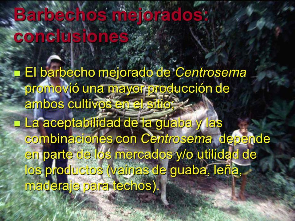 Barbechos mejorados: conclusiones El barbecho mejorado de Centrosema promovió una mayor producción de ambos cultivos en el sitio; El barbecho mejorado