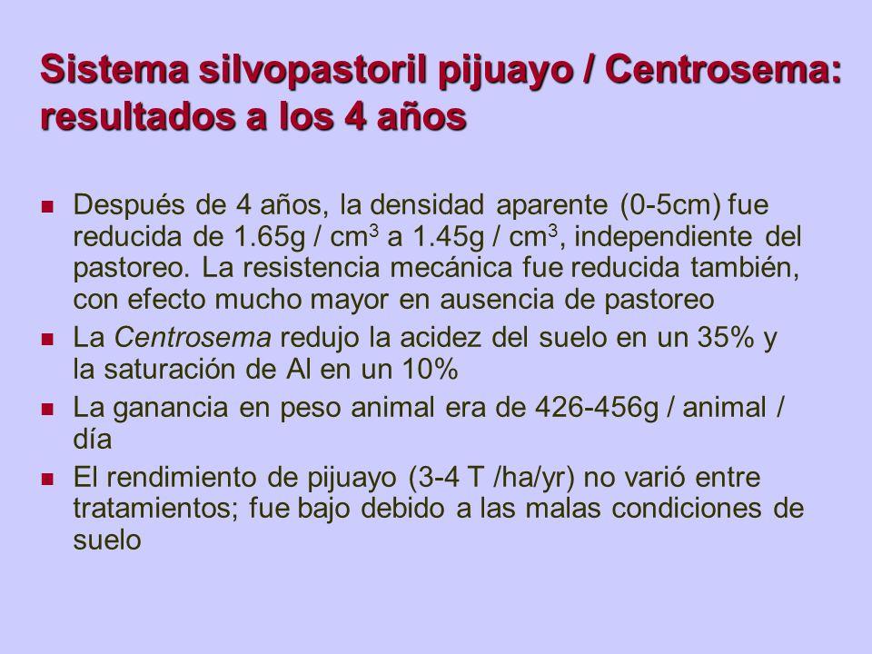 Sistema silvopastoril pijuayo / Centrosema: resultados a los 4 años Después de 4 años, la densidad aparente (0-5cm) fue reducida de 1.65g / cm 3 a 1.4