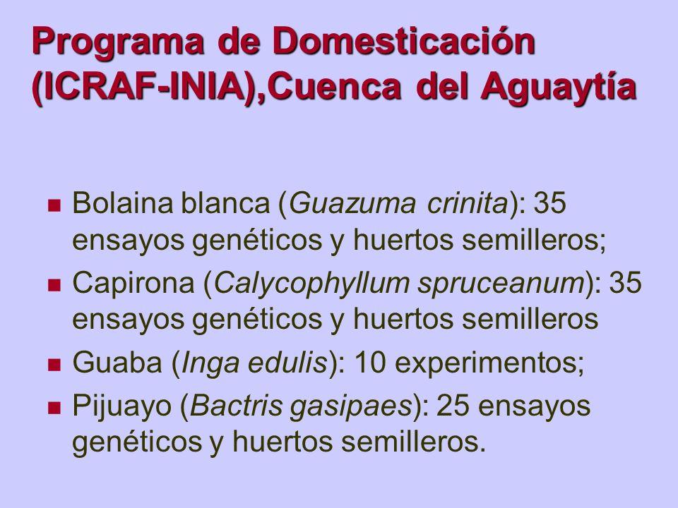 Programa de Domesticación (ICRAF-INIA),Cuenca del Aguaytía Bolaina blanca (Guazuma crinita): 35 ensayos genéticos y huertos semilleros; Capirona (Caly