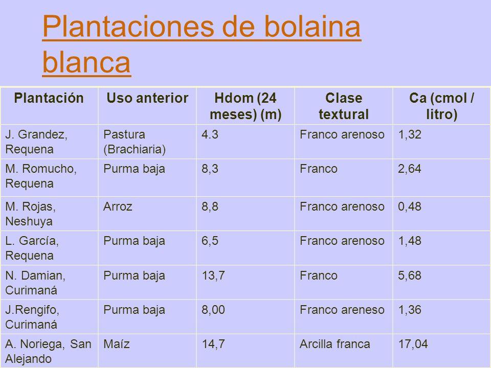 Plantaciones de bolaina blanca PlantaciónUso anteriorHdom (24 meses) (m) Clase textural Ca (cmol / litro) J. Grandez, Requena Pastura (Brachiaria) 4.3