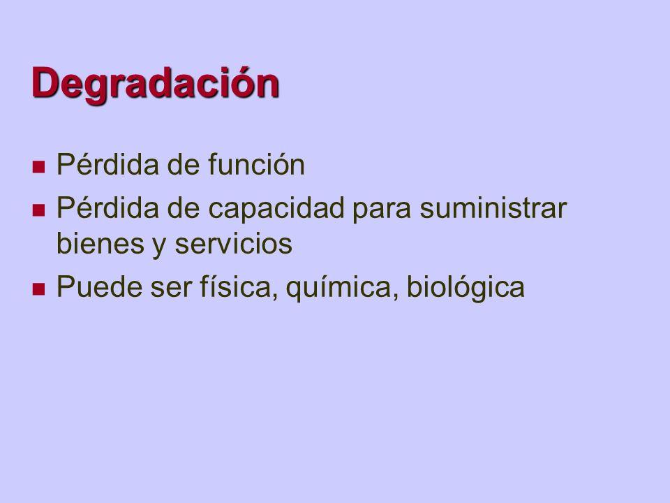 Degradación Pérdida de función Pérdida de capacidad para suministrar bienes y servicios Puede ser física, química, biológica