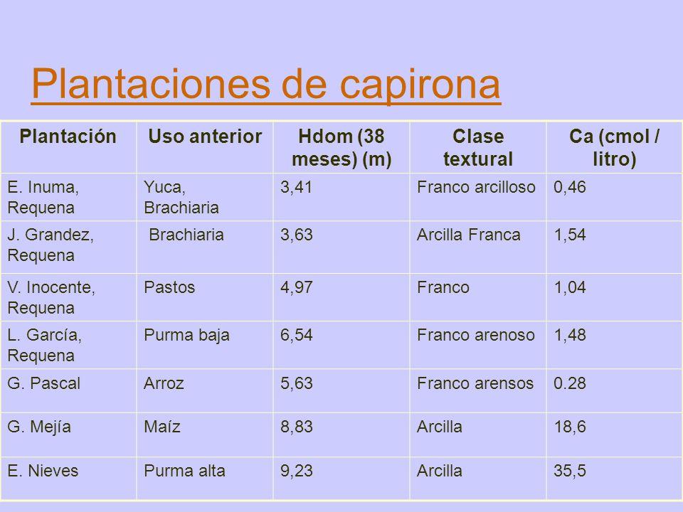 Plantaciones de capirona PlantaciónUso anteriorHdom (38 meses) (m) Clase textural Ca (cmol / litro) E. Inuma, Requena Yuca, Brachiaria 3,41Franco arci