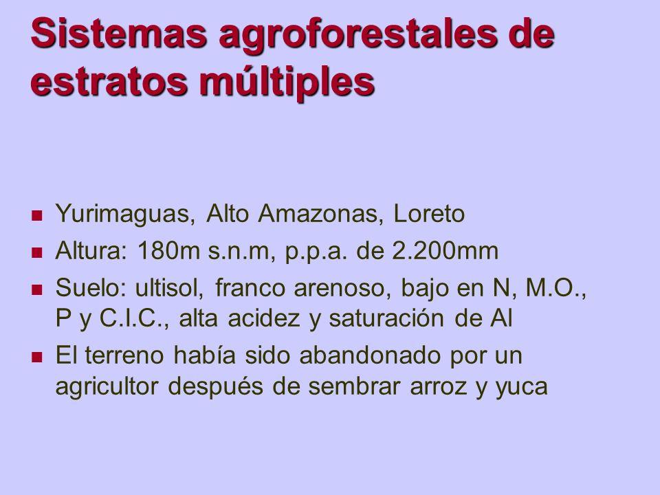 Sistemas agroforestales de estratos múltiples Yurimaguas, Alto Amazonas, Loreto Altura: 180m s.n.m, p.p.a. de 2.200mm Suelo: ultisol, franco arenoso,