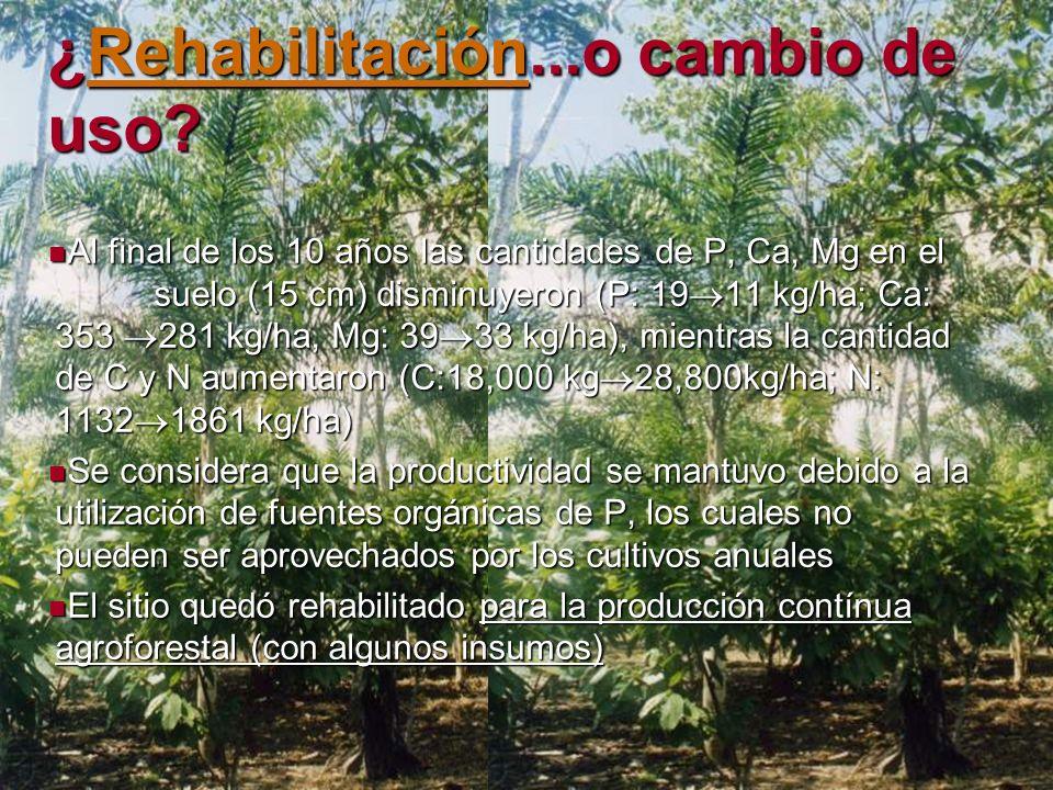 ¿Rehabilitación...o cambio de uso? Rehabilitación Al final de los 10 años las cantidades de P, Ca, Mg en el suelo (15 cm) disminuyeron (P: 19 11 kg/ha