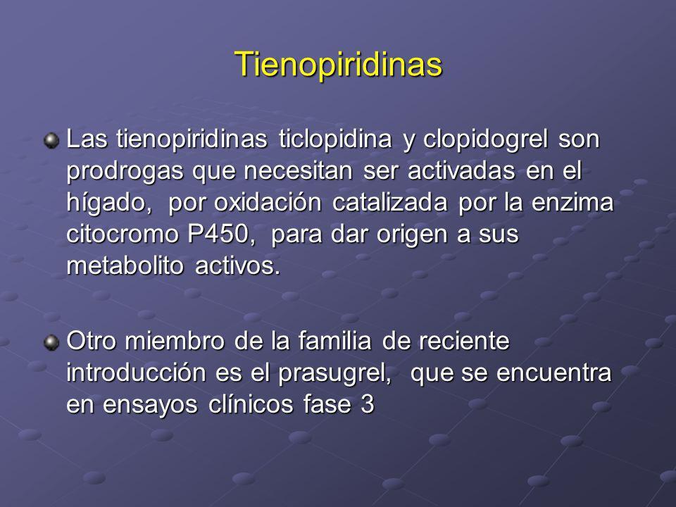 Tienopiridinas Las tienopiridinas ticlopidina y clopidogrel son prodrogas que necesitan ser activadas en el hígado, por oxidación catalizada por la en