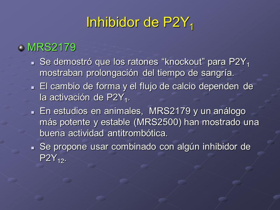 Inhibidor de P2Y 1 MRS2179 Se demostró que los ratones knockout para P2Y 1 mostraban prolongación del tiempo de sangría. Se demostró que los ratones k