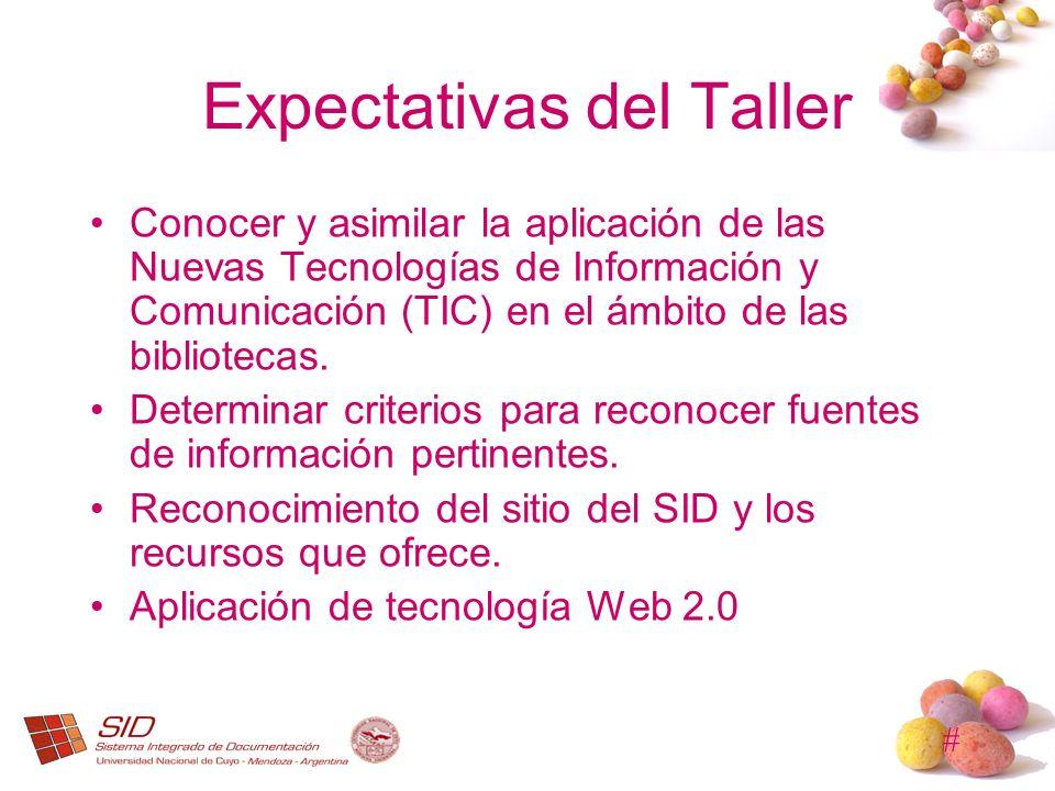 # Expectativas del Taller Conocer y asimilar la aplicación de las Nuevas Tecnologías de Información y Comunicación (TIC) en el ámbito de las bibliotec