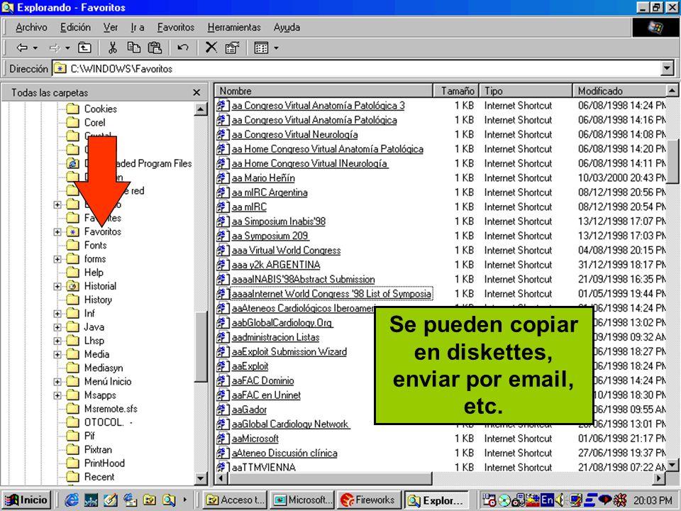 Se pueden copiar en diskettes, enviar por email, etc.