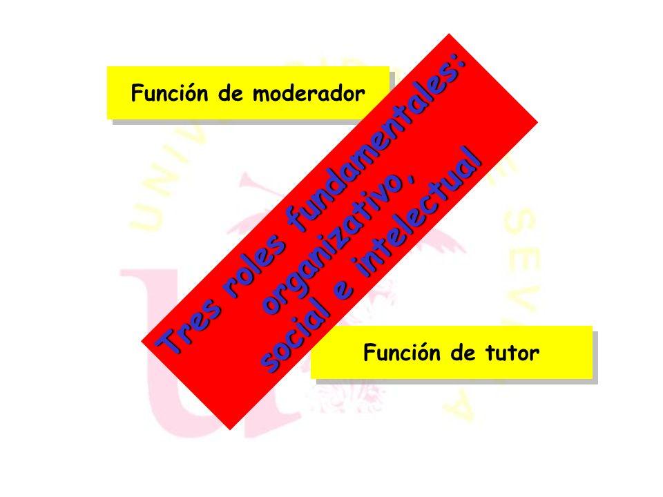 Proveedor de Contenidos Tutor virtual Evaluador Director Tipos de profesores