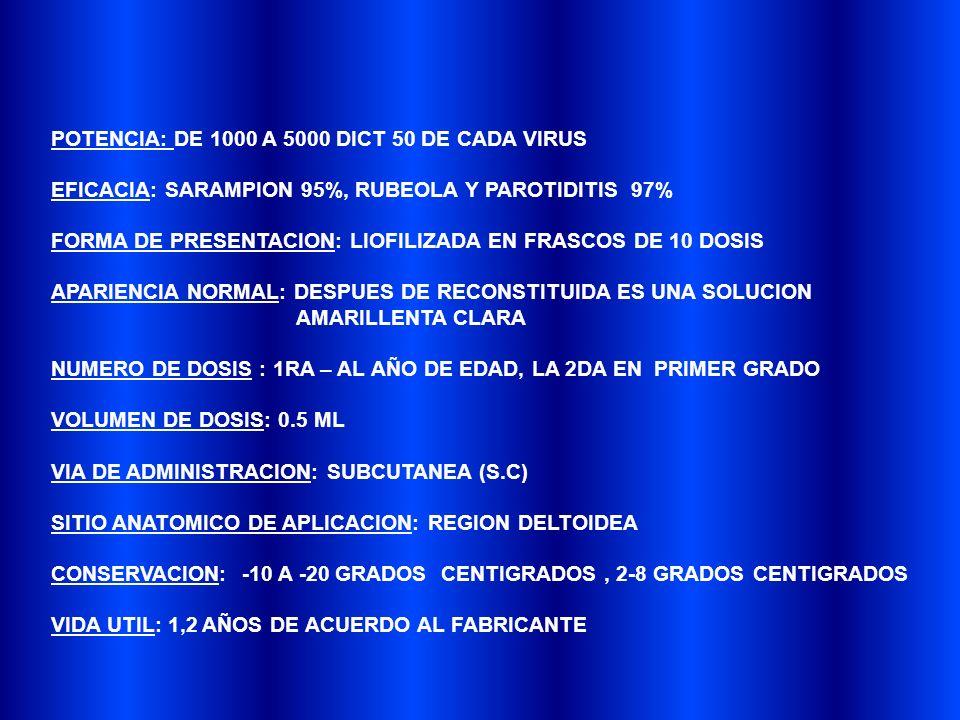 POTENCIA: DE 1000 A 5000 DICT 50 DE CADA VIRUS EFICACIA: SARAMPION 95%, RUBEOLA Y PAROTIDITIS 97% FORMA DE PRESENTACION: LIOFILIZADA EN FRASCOS DE 10 DOSIS APARIENCIA NORMAL: DESPUES DE RECONSTITUIDA ES UNA SOLUCION AMARILLENTA CLARA NUMERO DE DOSIS : 1RA – AL AÑO DE EDAD, LA 2DA EN PRIMER GRADO VOLUMEN DE DOSIS: 0.5 ML VIA DE ADMINISTRACION: SUBCUTANEA (S.C) SITIO ANATOMICO DE APLICACION: REGION DELTOIDEA CONSERVACION: -10 A -20 GRADOS CENTIGRADOS, 2-8 GRADOS CENTIGRADOS VIDA UTIL: 1,2 AÑOS DE ACUERDO AL FABRICANTE
