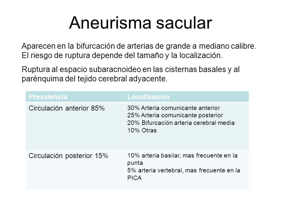 Aneurisma sacular Aparecen en la bifurcación de arterias de grande a mediano calibre. El riesgo de ruptura depende del tamaño y la localización. Ruptu