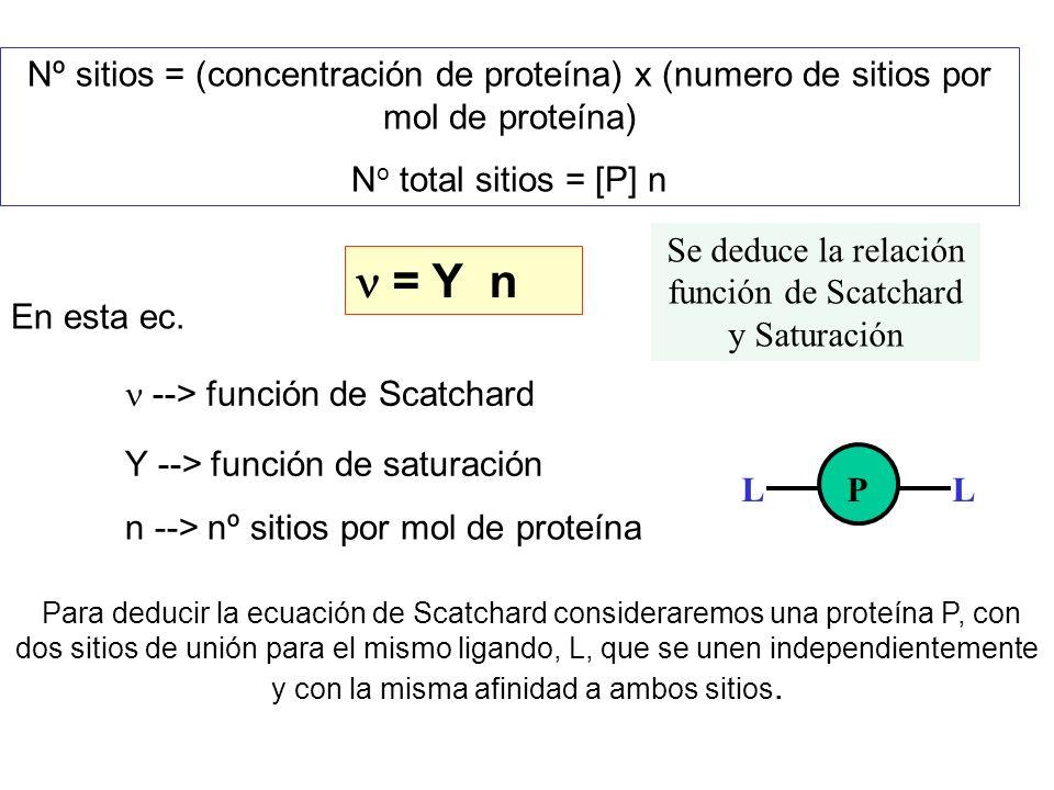 Nº sitios = (concentración de proteína) x (numero de sitios por mol de proteína) N o total sitios = [P] n = Y n En esta ec. --> función de Scatchard Y