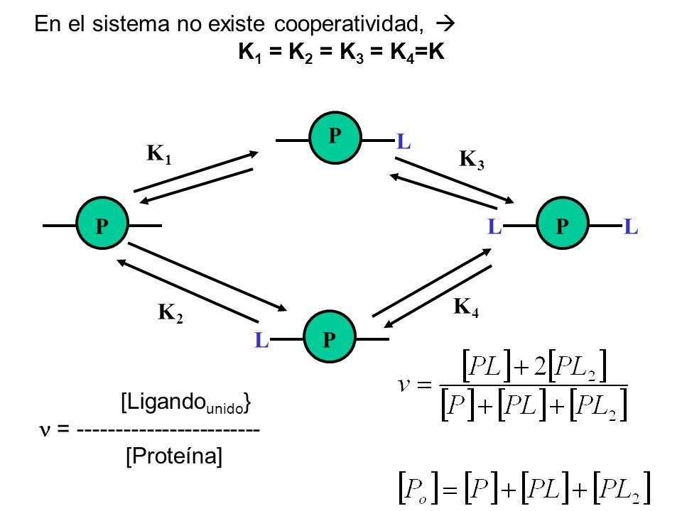 L L L L P PP P K1K1 K3K3 K4K4 K2K2 En el sistema no existe cooperatividad, K 1 = K 2 = K 3 = K 4 =K [Ligando unido } = ------------------------ [Prote