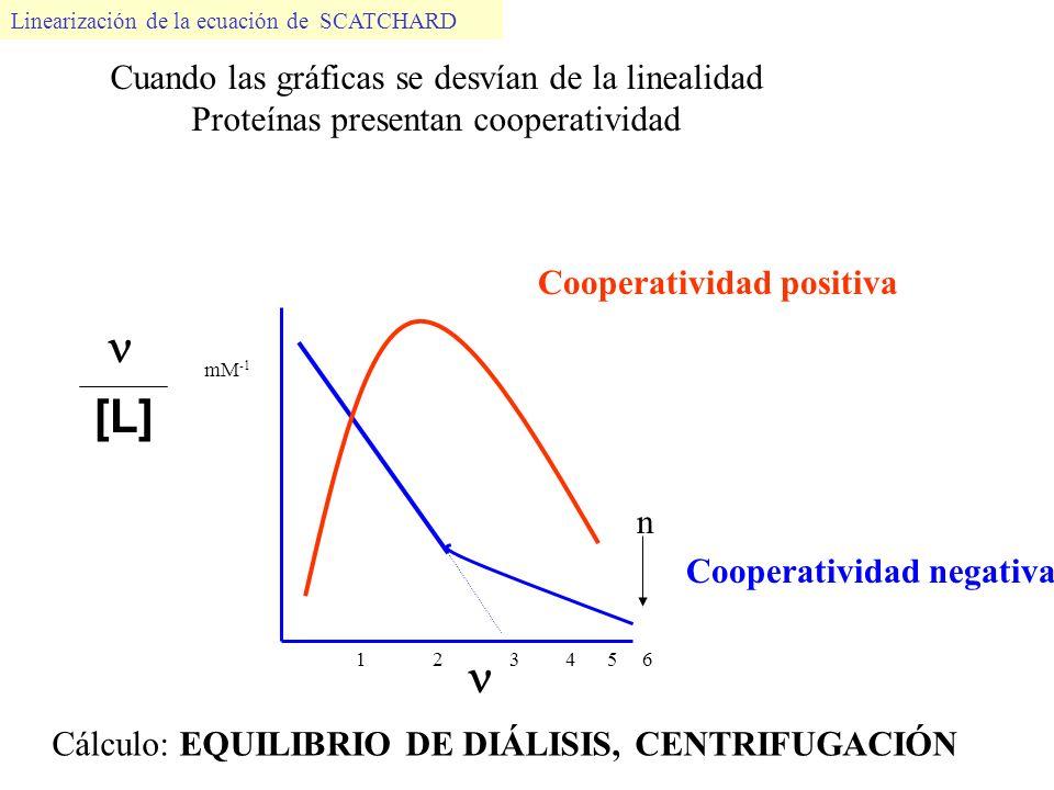 [L] mM -1 1 2 3 4 5 6 n Linearización de la ecuación de SCATCHARD Cooperatividad positiva Cooperatividad negativa Cuando las gráficas se desvían de la