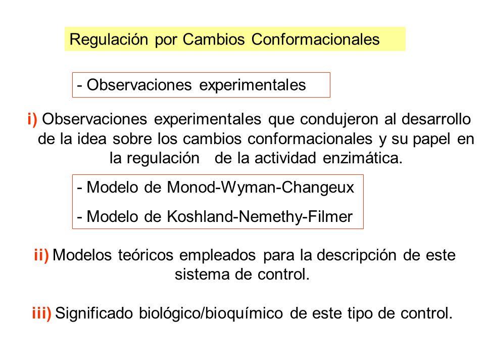 i) Observaciones experimentales que condujeron al desarrollo de la idea sobre los cambios conformacionales y su papel en la regulación de la actividad