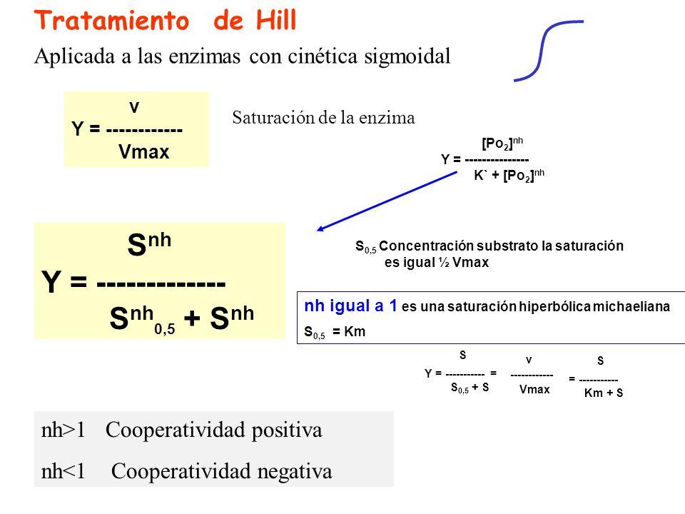 Tratamiento de Hill S nh Y = ------------- S nh 0,5 + S nh Aplicada a las enzimas con cinética sigmoidal v Y = ------------ Vmax Saturación de la enzi