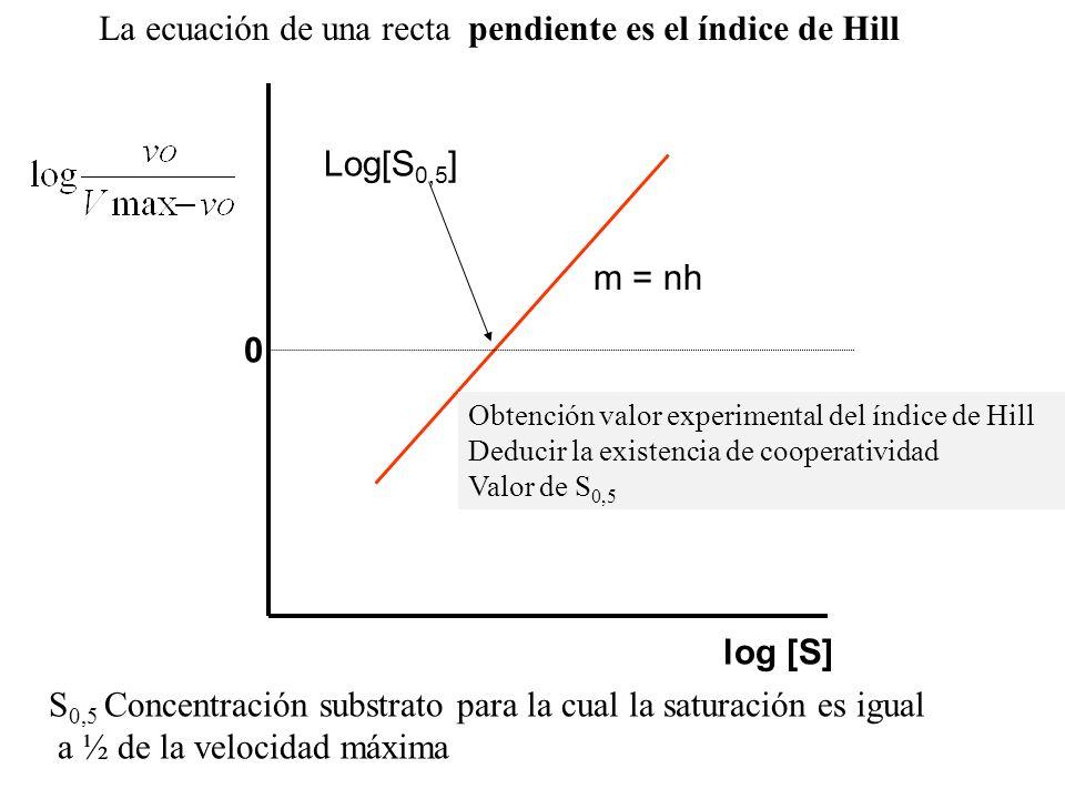 log [S] 0 Log[S 0,5 ] m = nh La ecuación de una recta pendiente es el índice de Hill S 0,5 Concentración substrato para la cual la saturación es igual