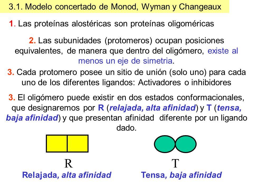 3.1. Modelo concertado de Monod, Wyman y Changeaux 2. Las subunidades (protomeros) ocupan posiciones equivalentes, de manera que dentro del oligómero,