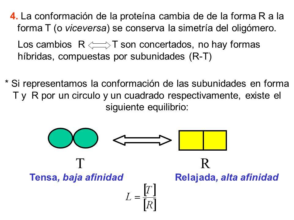 4. La conformación de la proteína cambia de de la forma R a la forma T (o viceversa) se conserva la simetría del oligómero. * Si representamos la conf