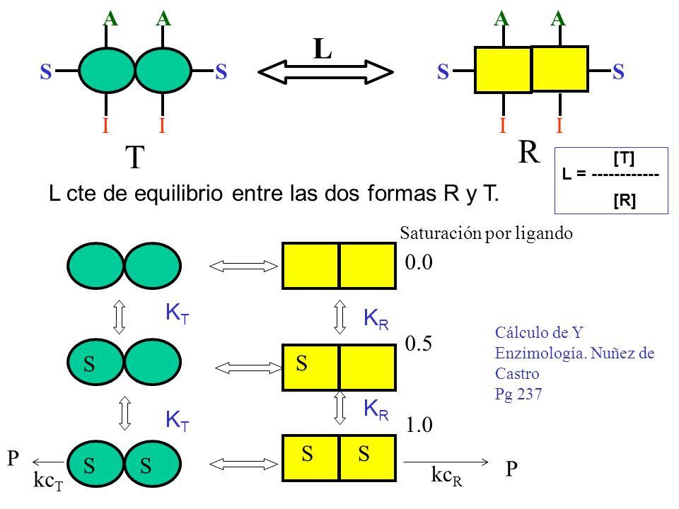 R T SS II L AA L cte de equilibrio entre las dos formas R y T. S SS KTKT KTKT [T] L = ------------ [R] Saturación por ligando 0.0 0.5 1.0 S S S KRKR K