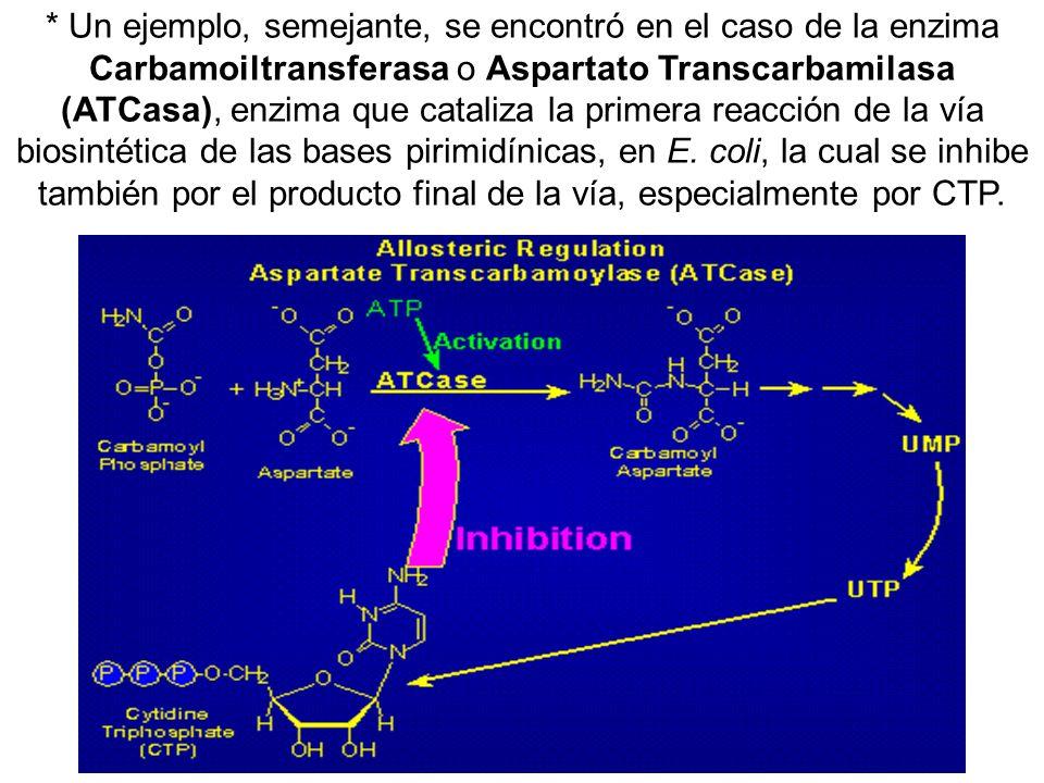 * Un ejemplo, semejante, se encontró en el caso de la enzima Carbamoiltransferasa o Aspartato Transcarbamilasa (ATCasa), enzima que cataliza la primer