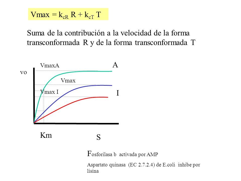 Vmax = k cR R + k cT T F osforilasa b activada por AMP Aspartato quinasa (EC 2.7.2.4) de E.coli inhibe por lisina vo S A I Km Vmax Vmax I VmaxA Suma d