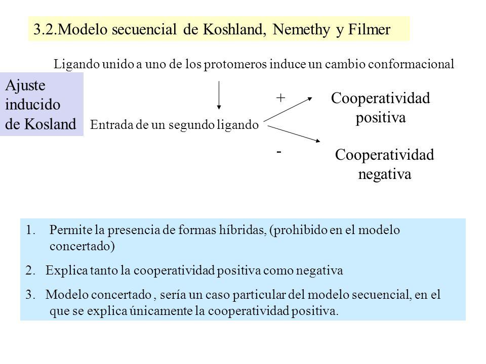 3.2.Modelo secuencial de Koshland, Nemethy y Filmer Ligando unido a uno de los protomeros induce un cambio conformacional Entrada de un segundo ligand