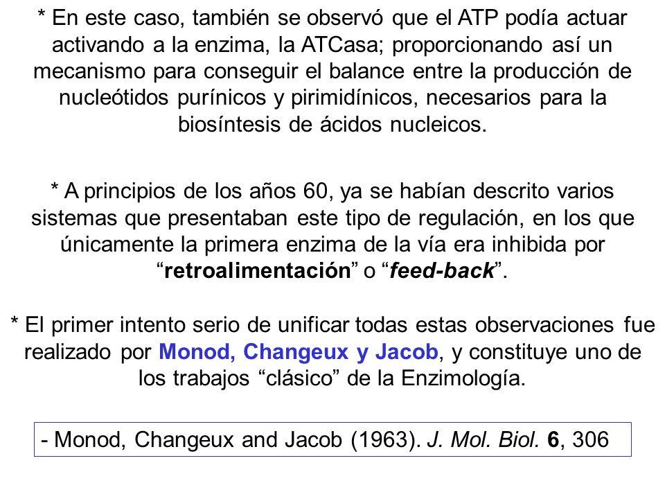 * En este caso, también se observó que el ATP podía actuar activando a la enzima, la ATCasa; proporcionando así un mecanismo para conseguir el balance