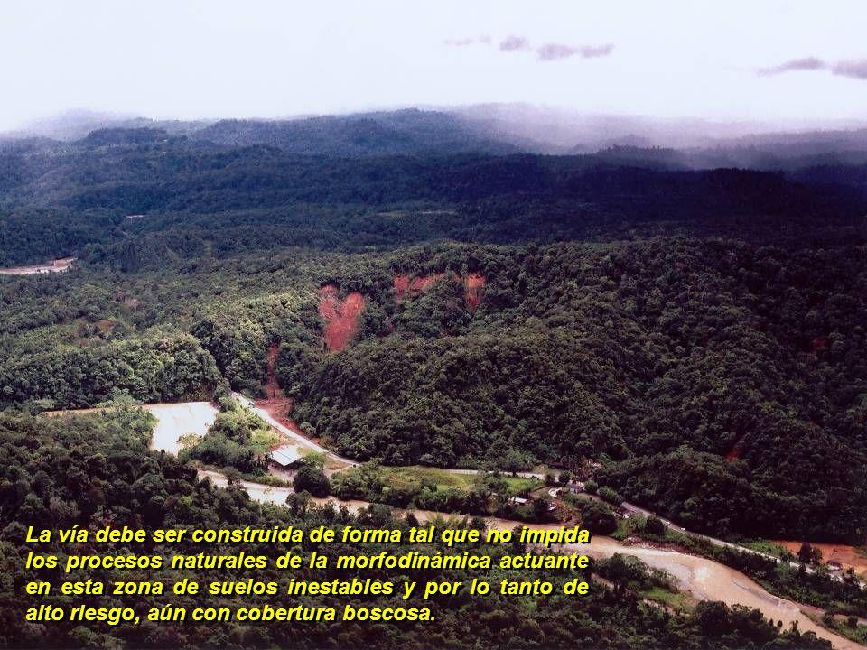 La vía debe ser construida de forma tal que no impida los procesos naturales de la morfodinámica actuante en esta zona de suelos inestables y por lo tanto de alto riesgo, aún con cobertura boscosa.