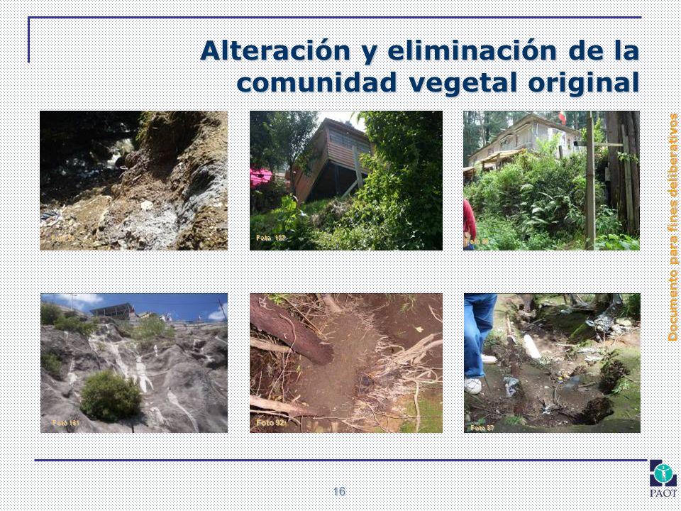 Documento para fines deliberativos 16 Alteración y eliminación de la comunidad vegetal original Foto 36 Foto 86 Foto 87 Foto 92 Foto 157 Foto 161