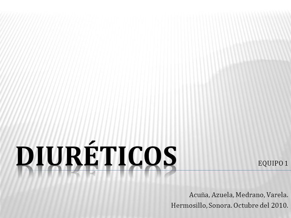 EQUIPO 1 Acuña, Azuela, Medrano, Varela. Hermosillo, Sonora. Octubre del 2010.