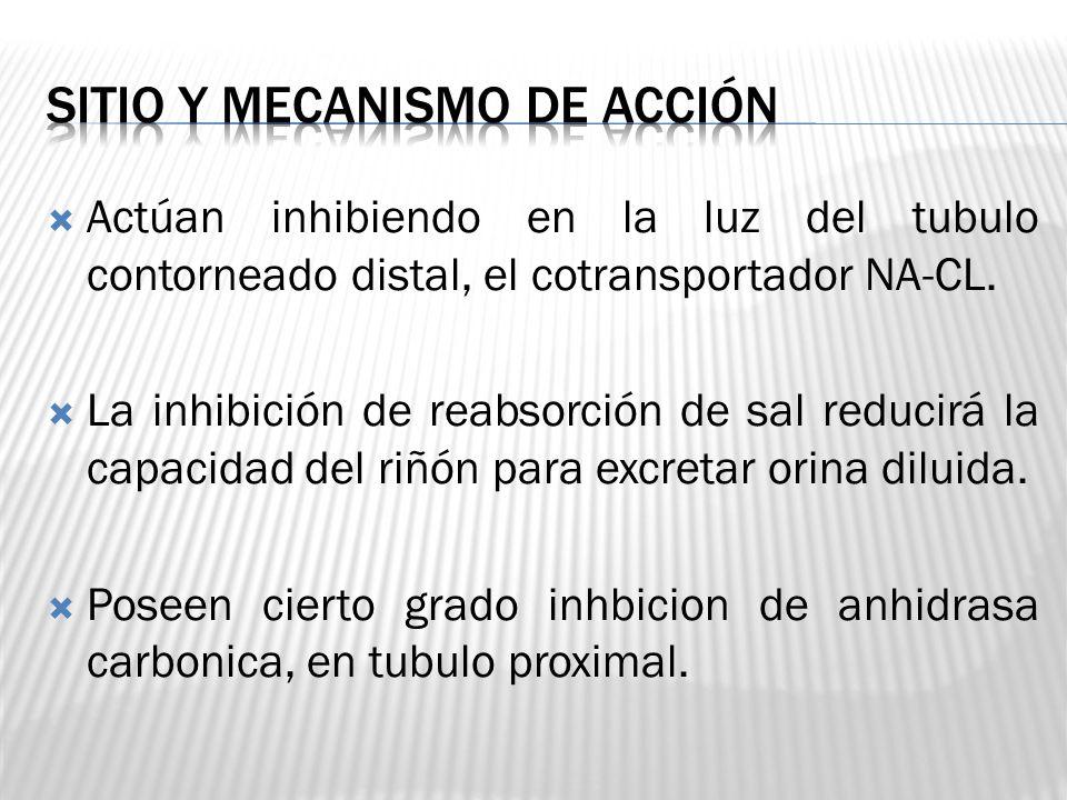 Actúan inhibiendo en la luz del tubulo contorneado distal, el cotransportador NA-CL. La inhibición de reabsorción de sal reducirá la capacidad del riñ