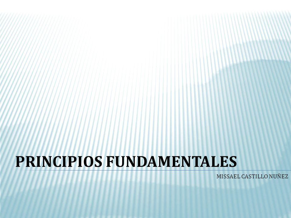 PRINCIPIOS FUNDAMENTALES MISSAEL CASTILLO NUÑEZ