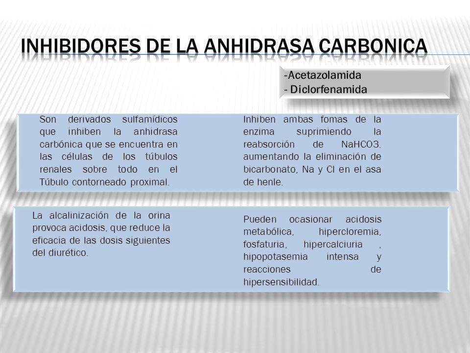 Son derivados sulfamídicos que inhiben la anhidrasa carbónica que se encuentra en las células de los túbulos renales sobre todo en el Túbulo contornea