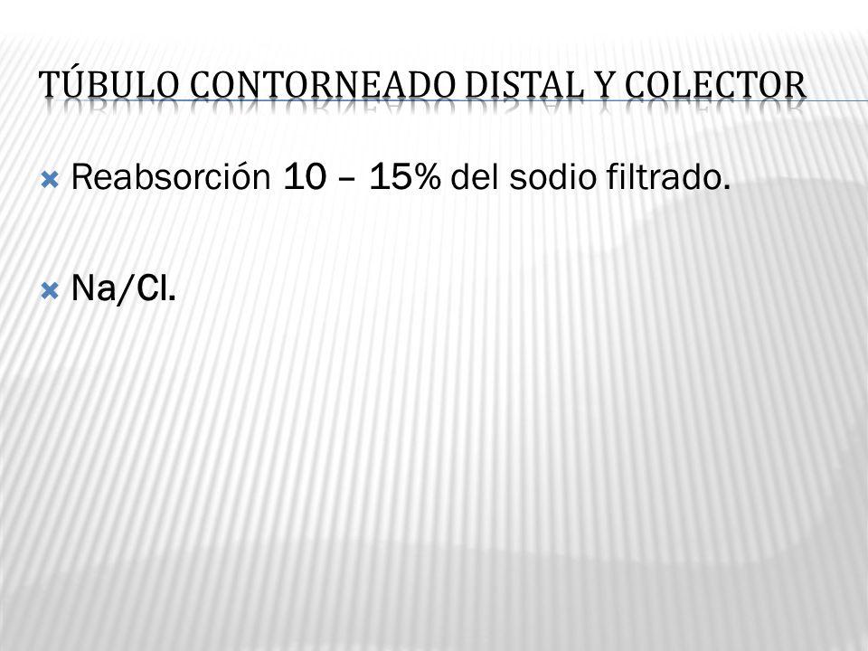 Reabsorción 10 – 15% del sodio filtrado. Na/Cl.