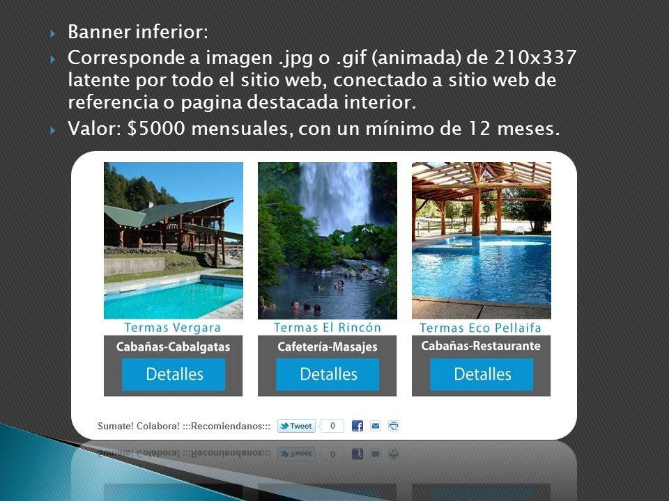Banner inferior: Corresponde a imagen.jpg o.gif (animada) de 210x337 latente por todo el sitio web, conectado a sitio web de referencia o pagina desta