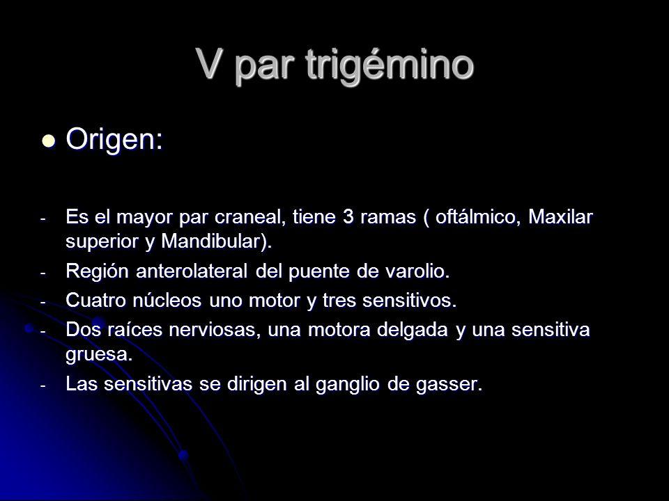 V par trigémino Origen: Origen: - Es el mayor par craneal, tiene 3 ramas ( oftálmico, Maxilar superior y Mandibular). - Región anterolateral del puent