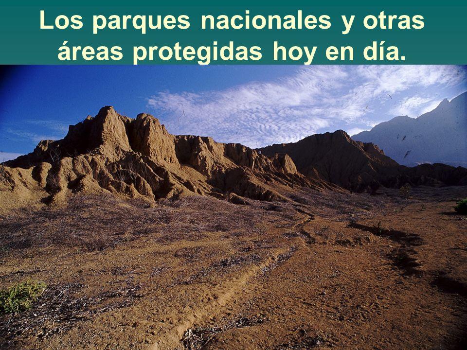 Los parques nacionales y otras áreas protegidas hoy en día.