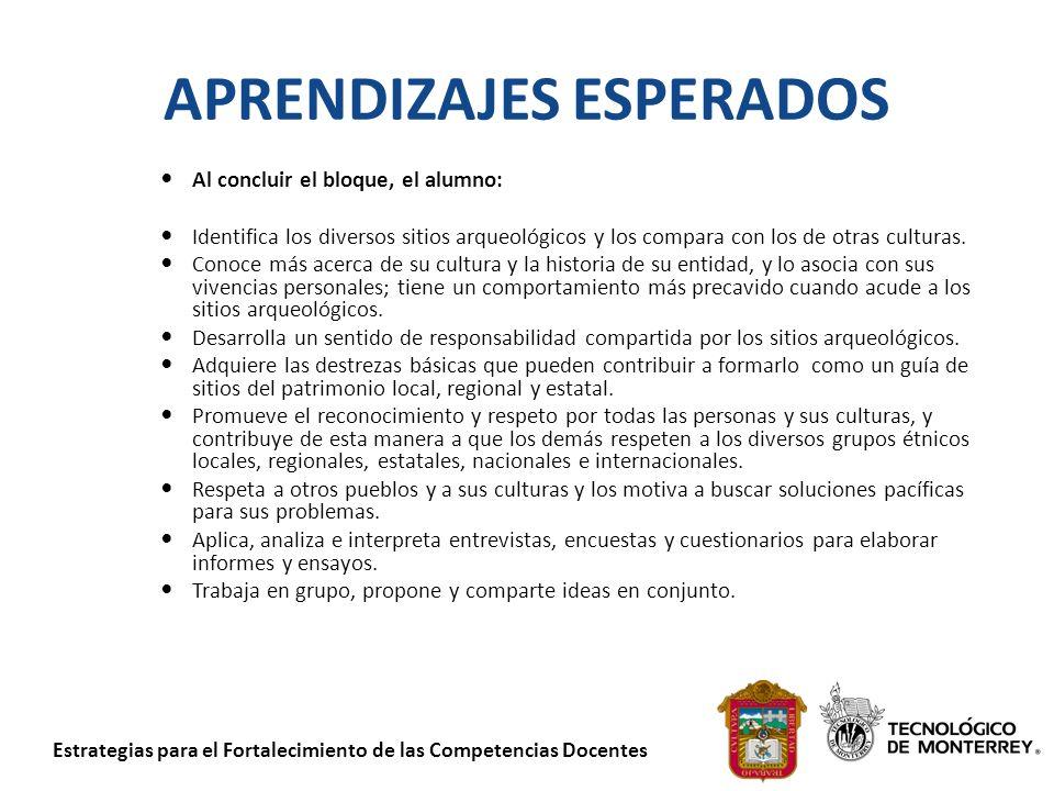 Estrategias para el Fortalecimiento de las Competencias Docentes 2.